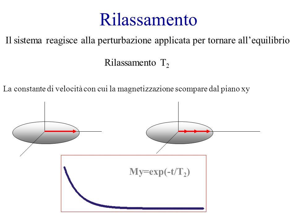 Rilassamento Il sistema reagisce alla perturbazione applicata per tornare all'equilibrio. Rilassamento T2.