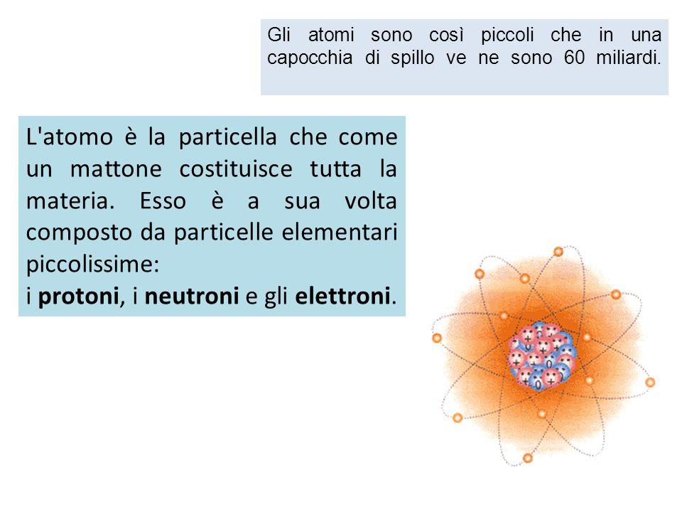 i protoni, i neutroni e gli elettroni.