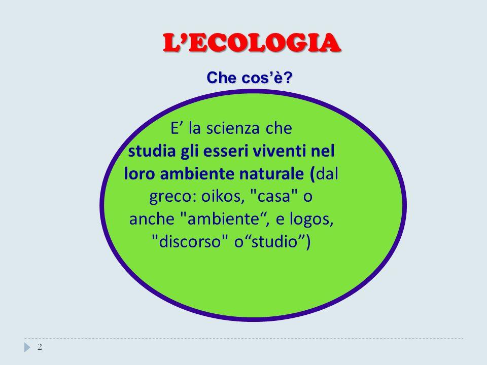 anche ambiente , e logos, discorso o studio )