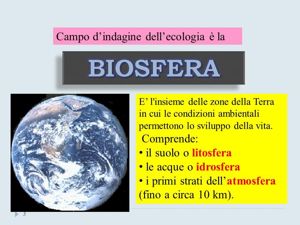 BIOSFERA Campo d'indagine dell'ecologia è la Comprende: