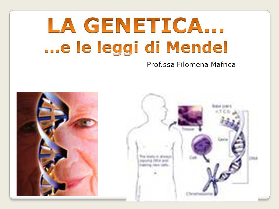 LA GENETICA… …e le leggi di Mendel Prof.ssa Filomena Mafrica