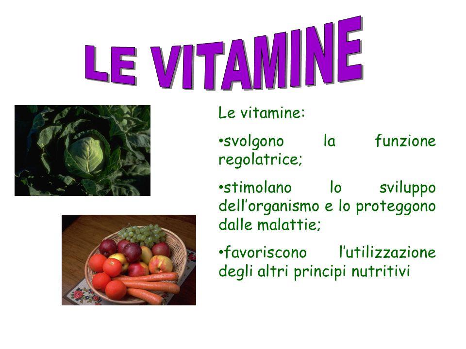 LE VITAMINE Le vitamine: svolgono la funzione regolatrice;