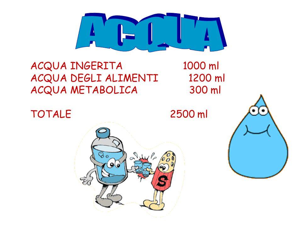 ACQUA ACQUA INGERITA 1000 ml ACQUA DEGLI ALIMENTI 1200 ml