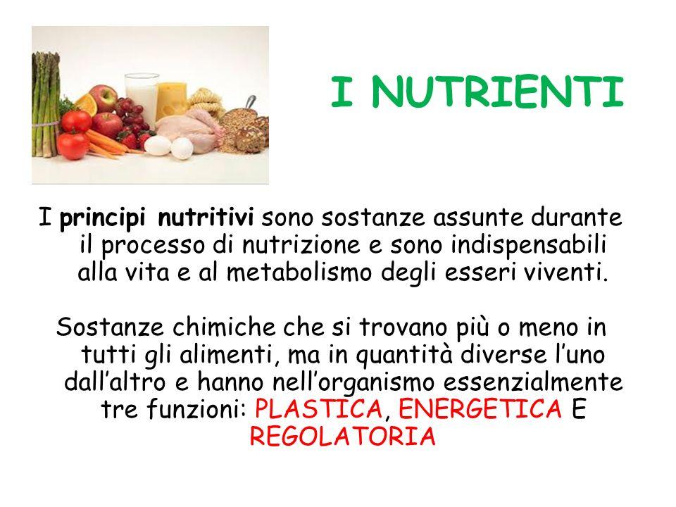 I NUTRIENTI
