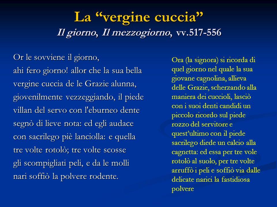 La vergine cuccia Il giorno, Il mezzogiorno, vv.517-556