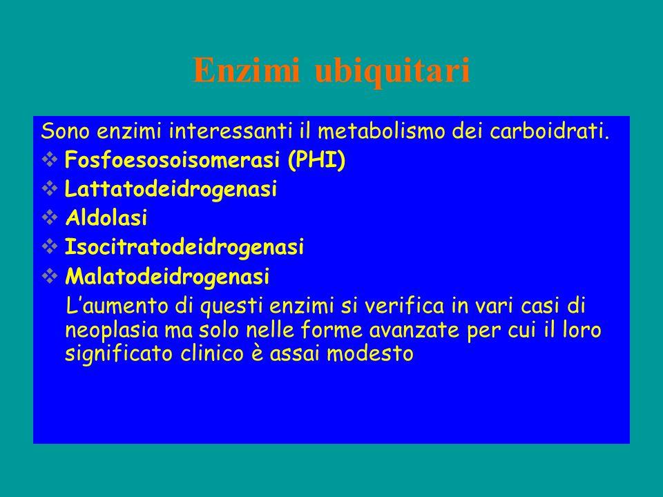 Enzimi ubiquitari Sono enzimi interessanti il metabolismo dei carboidrati. Fosfoesosoisomerasi (PHI)