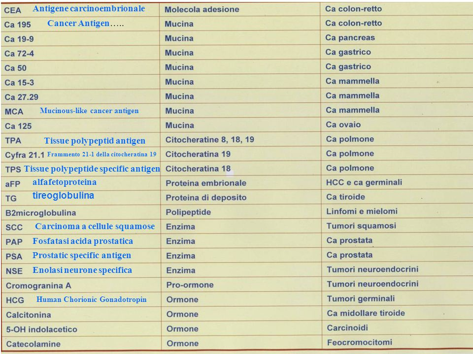 Antigene carcinoembrionale
