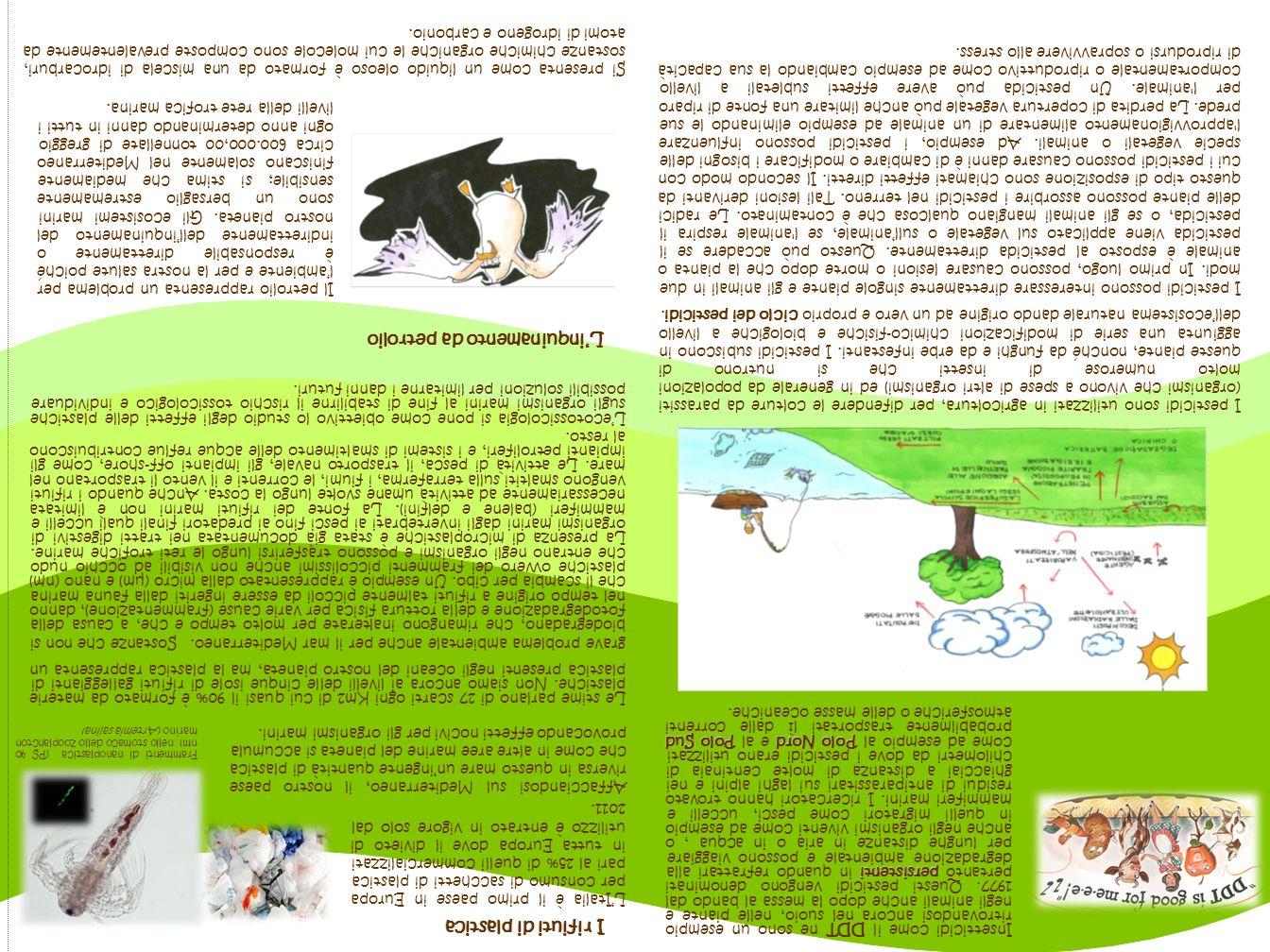 Esposizione Attorno Al Mediterraneo : Esposizione biodisponibilità bioaccumulo e