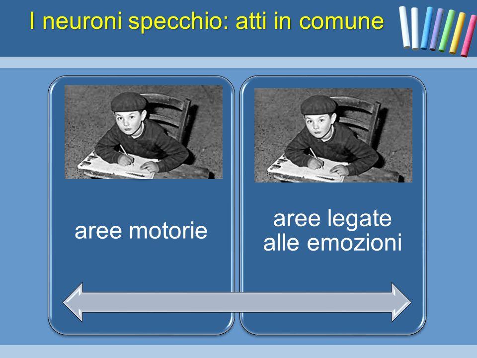 Paola Giunchi Sapienza Universita Di Roma Ppt Scaricare