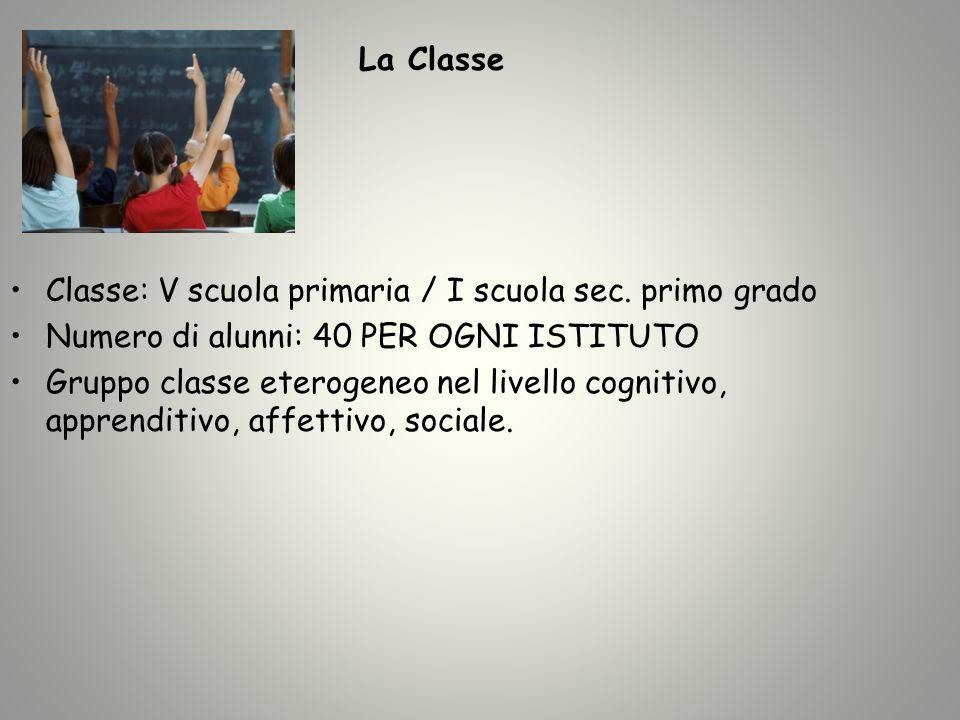 La Classe Classe: V scuola primaria / I scuola sec. primo grado. Numero di alunni: 40 PER OGNI ISTITUTO.