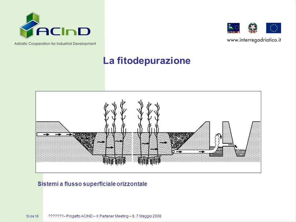 La fitodepurazione Sistemi a flusso superficiale orizzontale