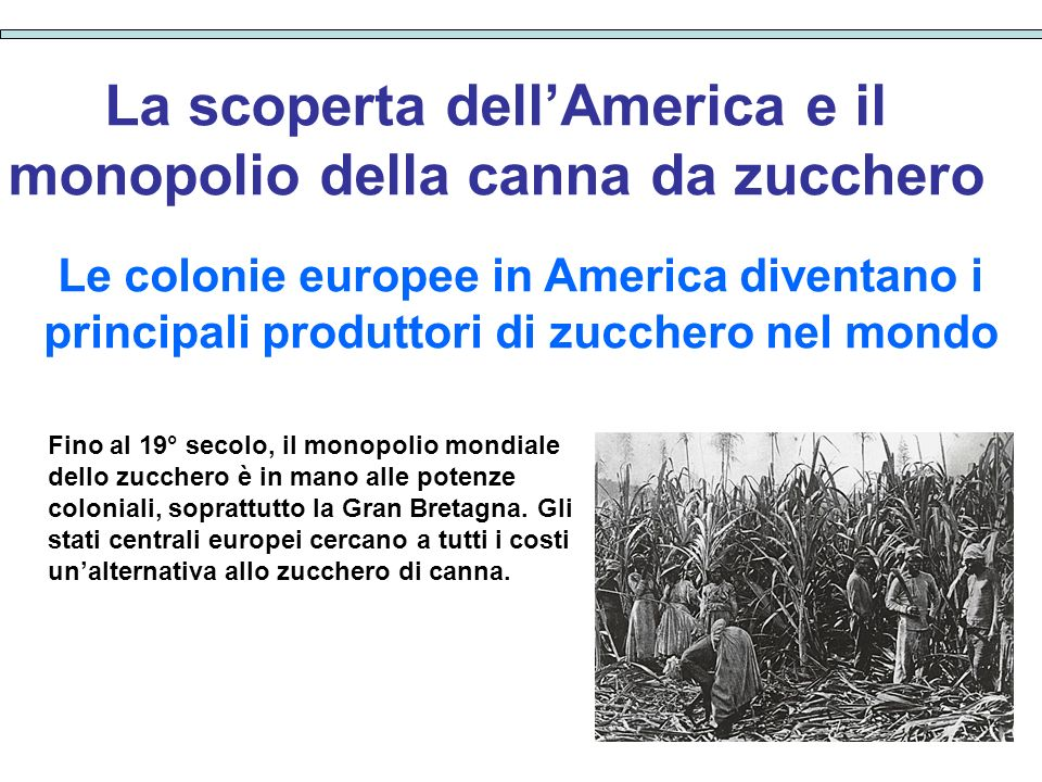 Dolcificanti una saga molecolare ppt scaricare for Cabina dell orso dello zucchero