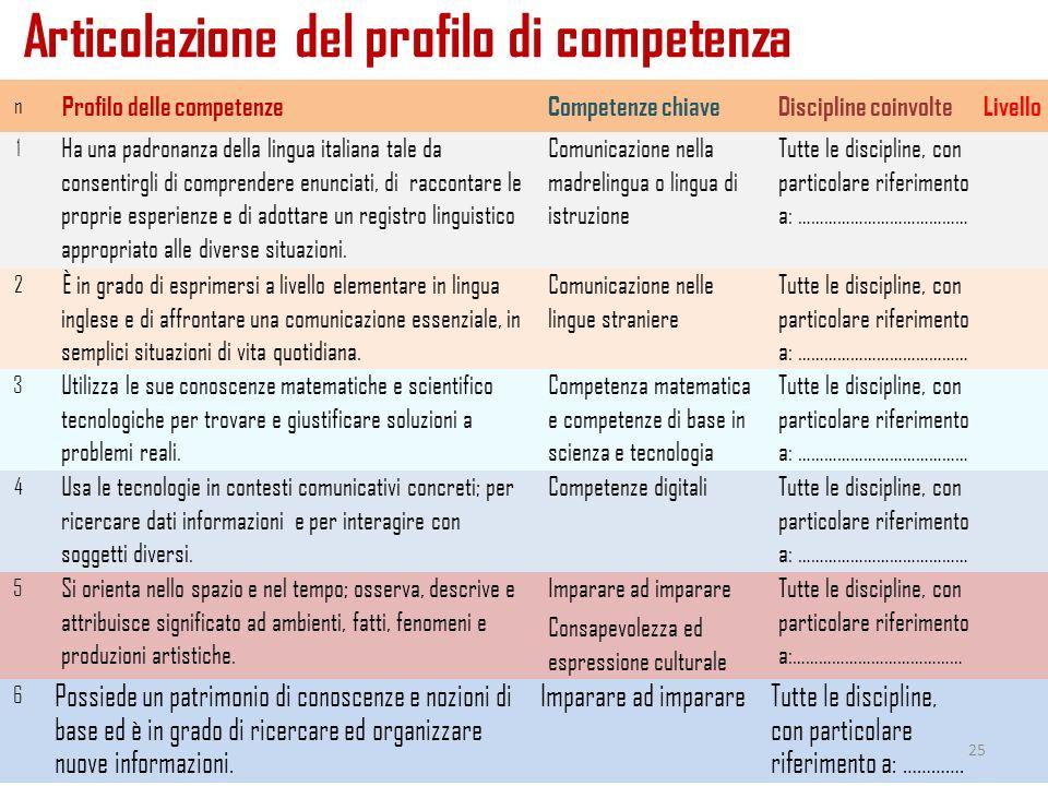 Articolazione del profilo di competenza