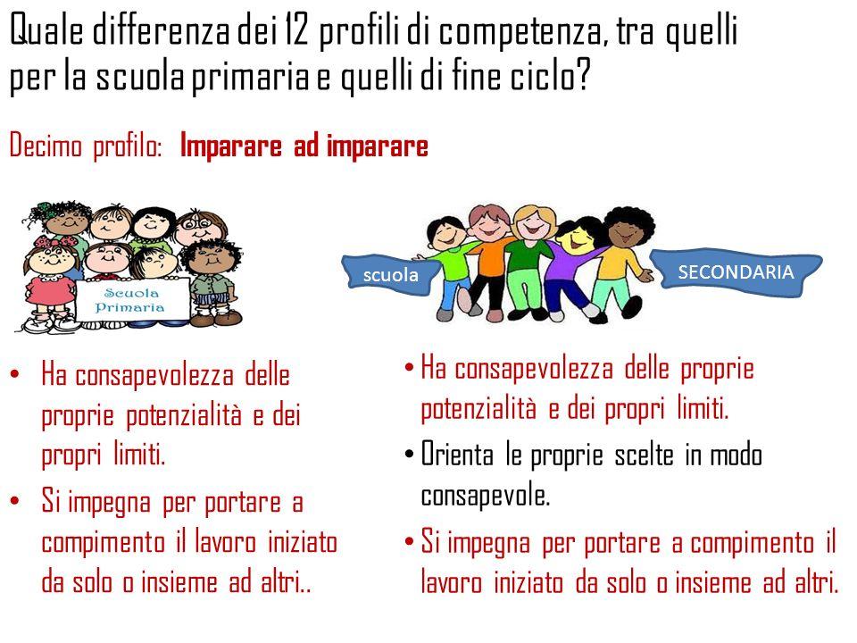 Quale differenza dei 12 profili di competenza, tra quelli per la scuola primaria e quelli di fine ciclo