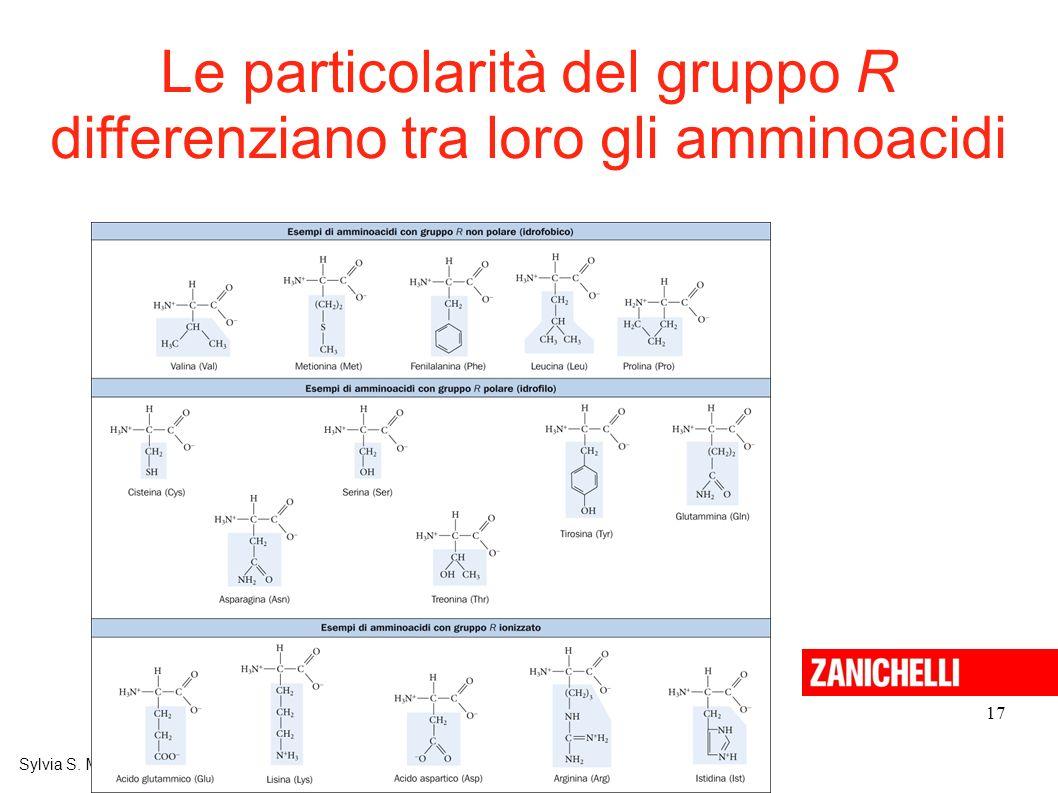 Le particolarità del gruppo R differenziano tra loro gli amminoacidi