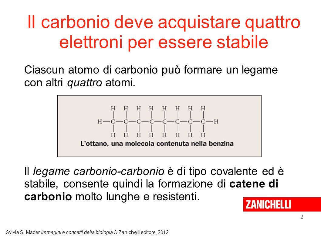 Il carbonio deve acquistare quattro elettroni per essere stabile