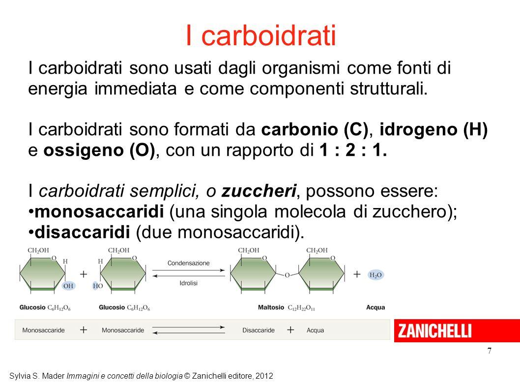 I carboidrati I carboidrati sono usati dagli organismi come fonti di energia immediata e come componenti strutturali.