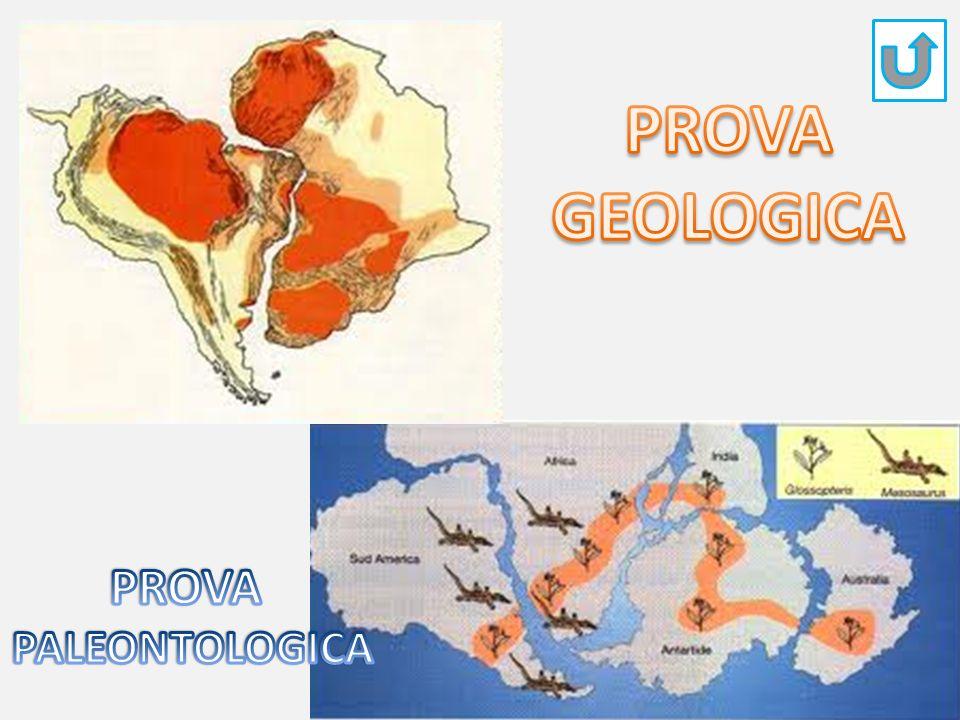 PROVA GEOLOGICA PROVA PALEONTOLOGICA