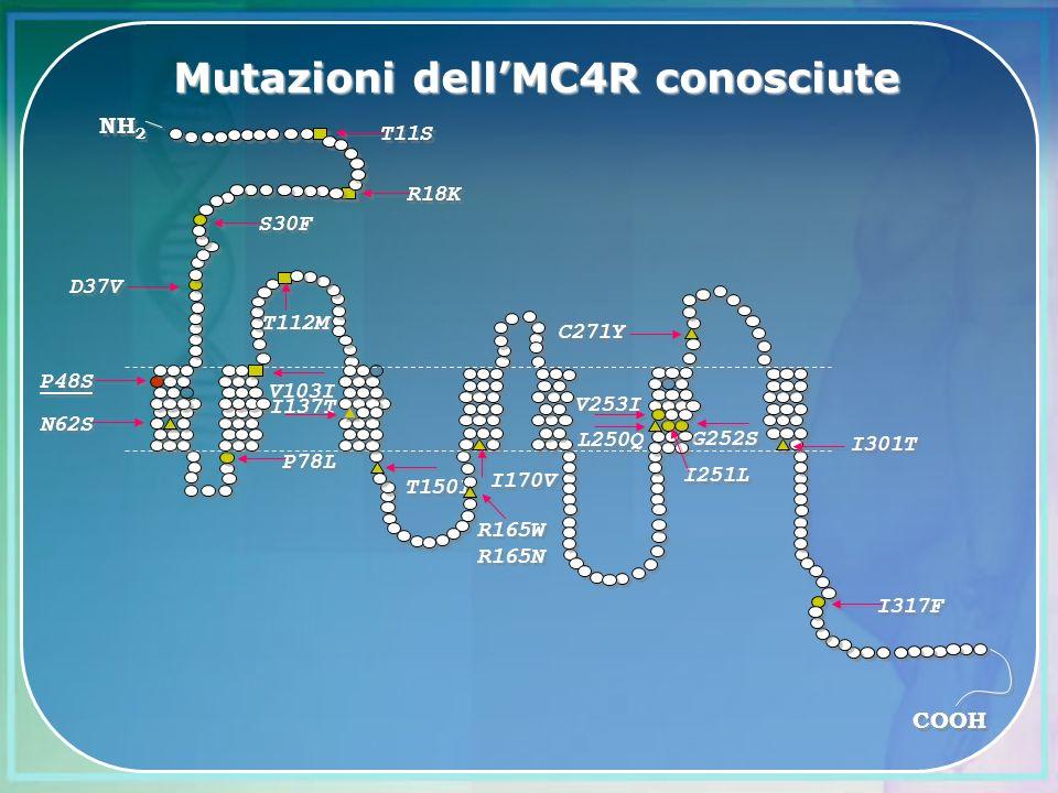 Mutazioni dell'MC4R conosciute