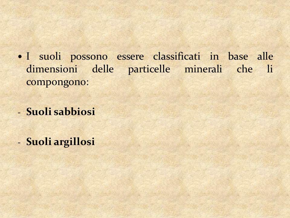I suoli possono essere classificati in base alle dimensioni delle particelle minerali che li compongono: