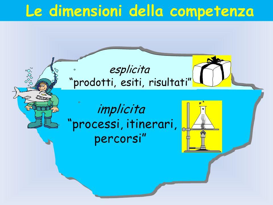 Le dimensioni della competenza