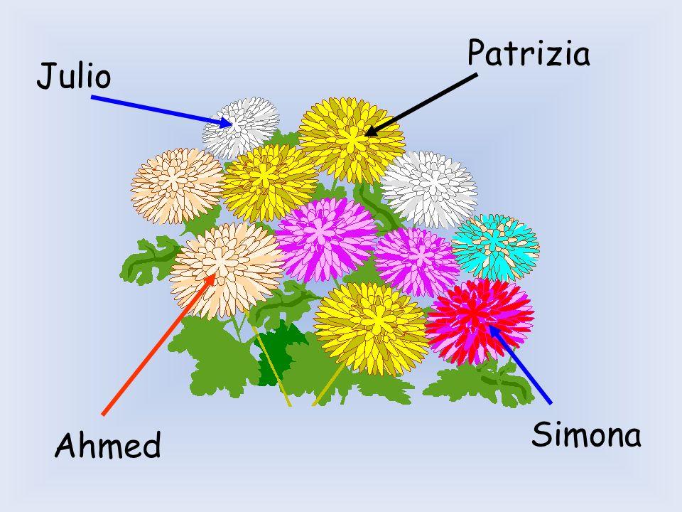 Patrizia Julio Simona Ahmed