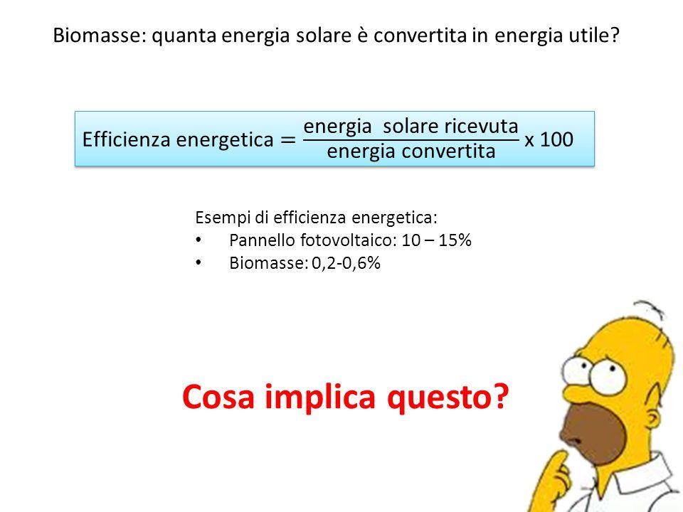 Biomasse: quanta energia solare è convertita in energia utile