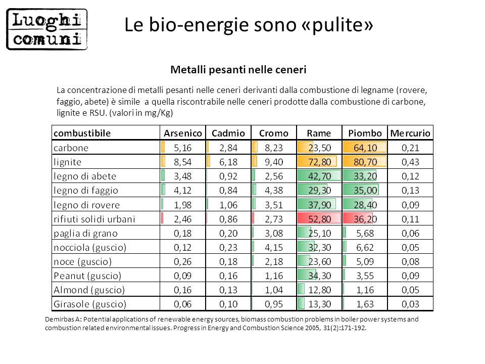Le bio-energie sono «pulite»