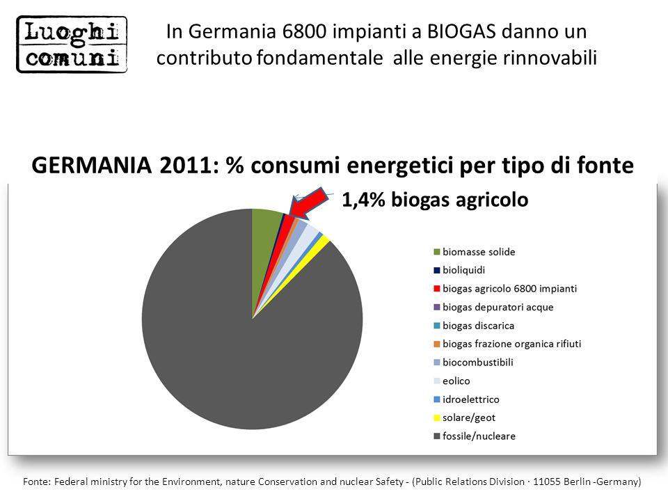 GERMANIA 2011: % consumi energetici per tipo di fonte