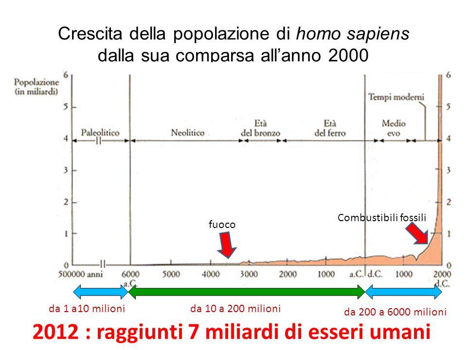2012 : raggiunti 7 miliardi di esseri umani