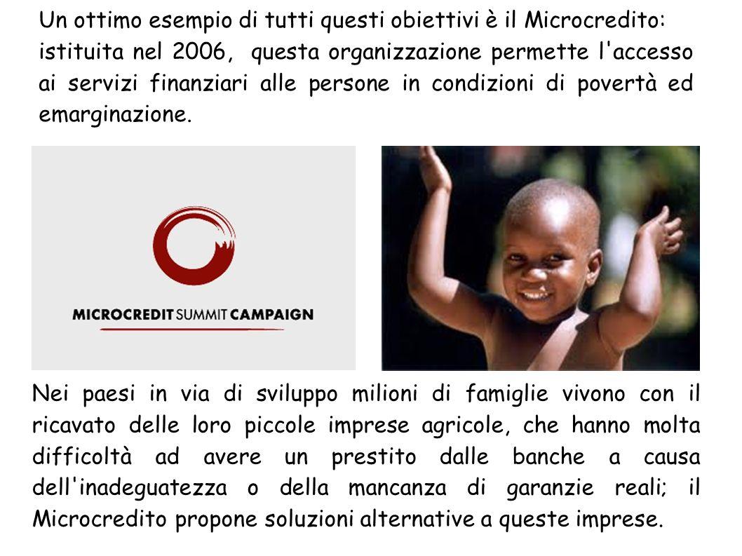 Un ottimo esempio di tutti questi obiettivi è il Microcredito: