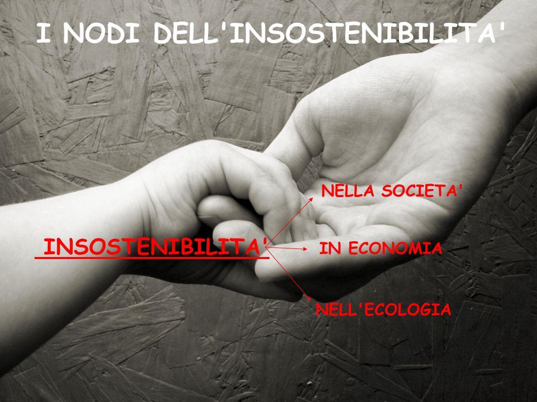 I NODI DELL INSOSTENIBILITA