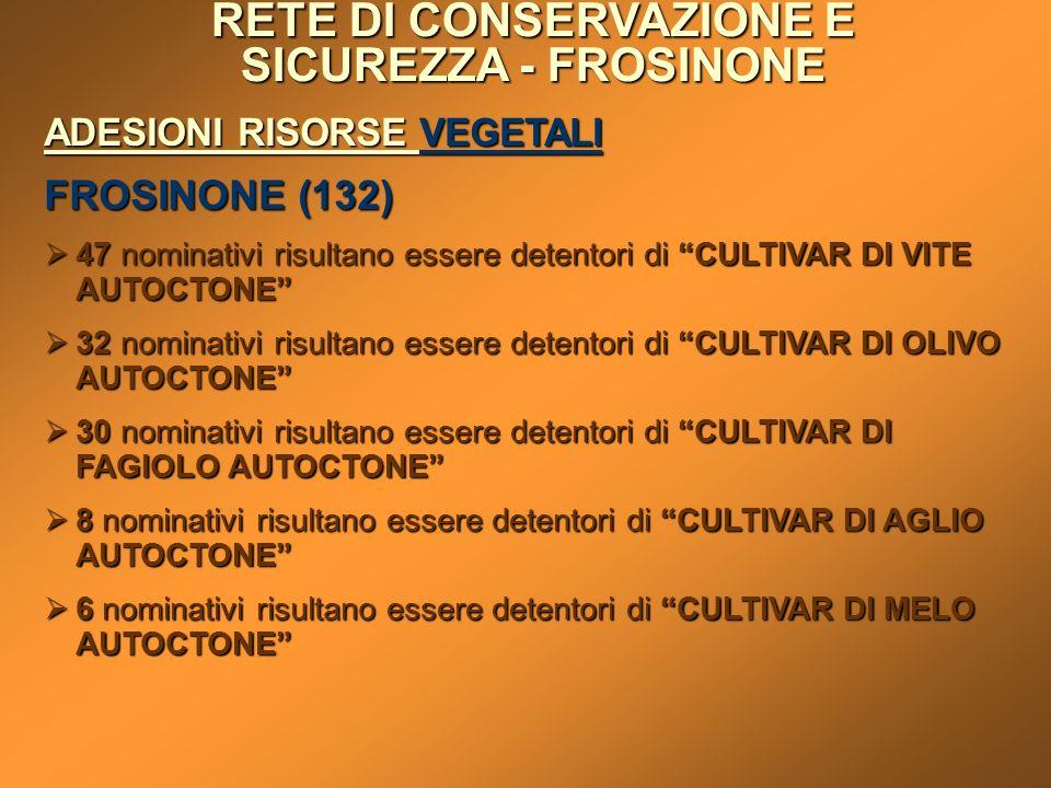 RETE DI CONSERVAZIONE E SICUREZZA - FROSINONE