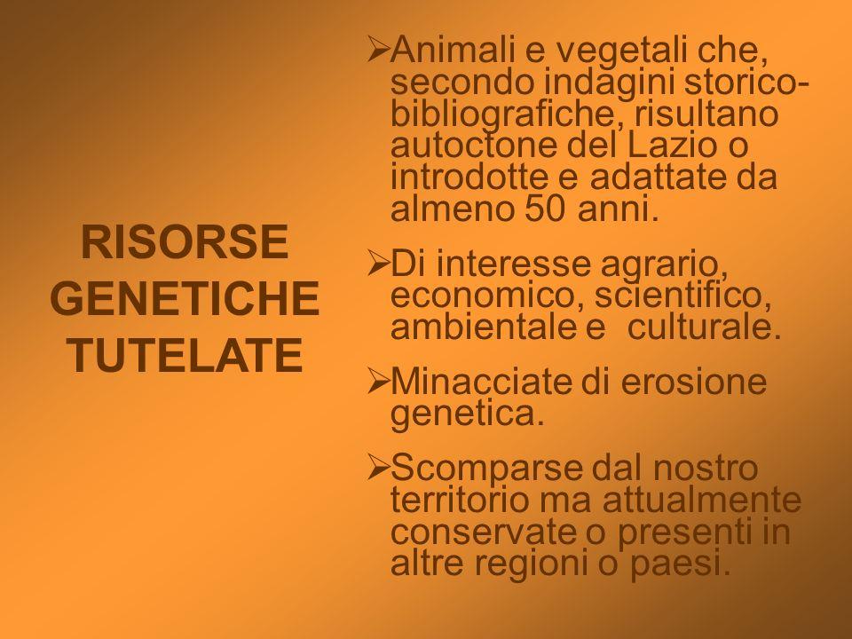 RISORSE GENETICHE TUTELATE