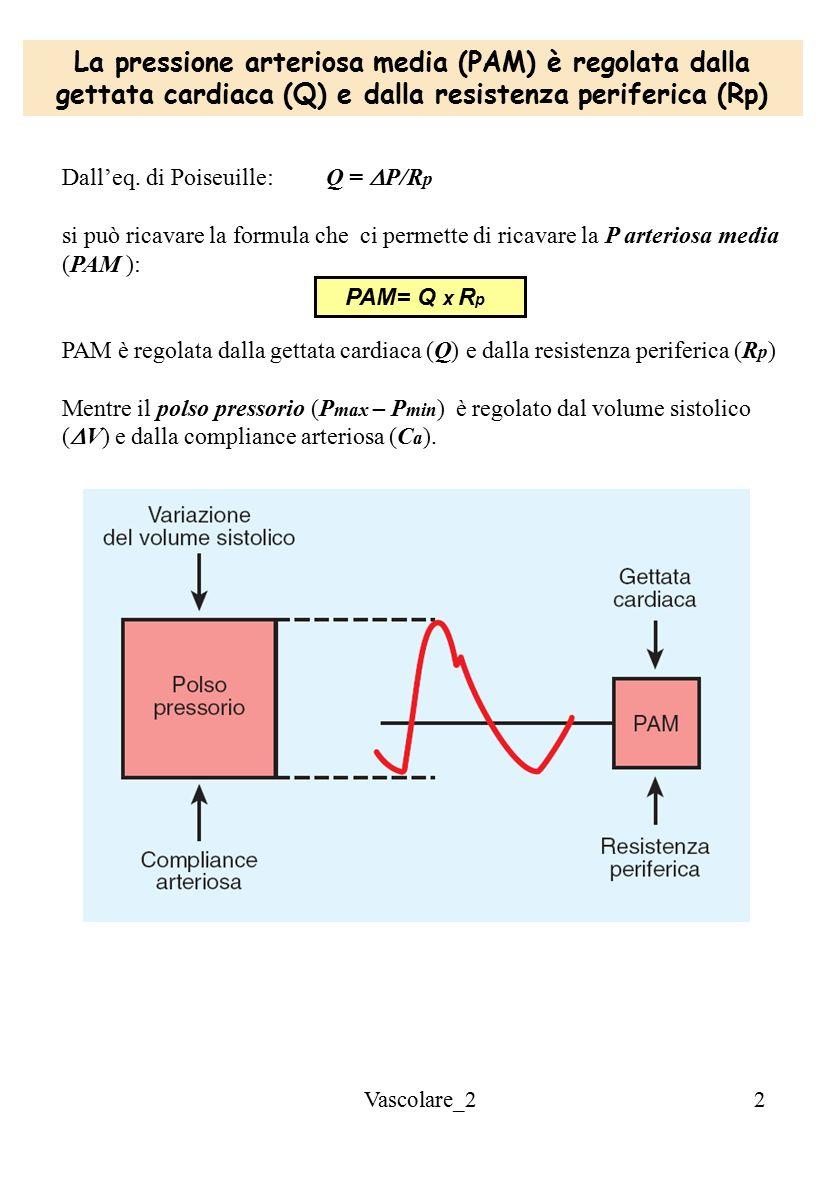 La pressione arteriosa media (PAM) è regolata dalla gettata cardiaca (Q) e dalla resistenza periferica (Rp)