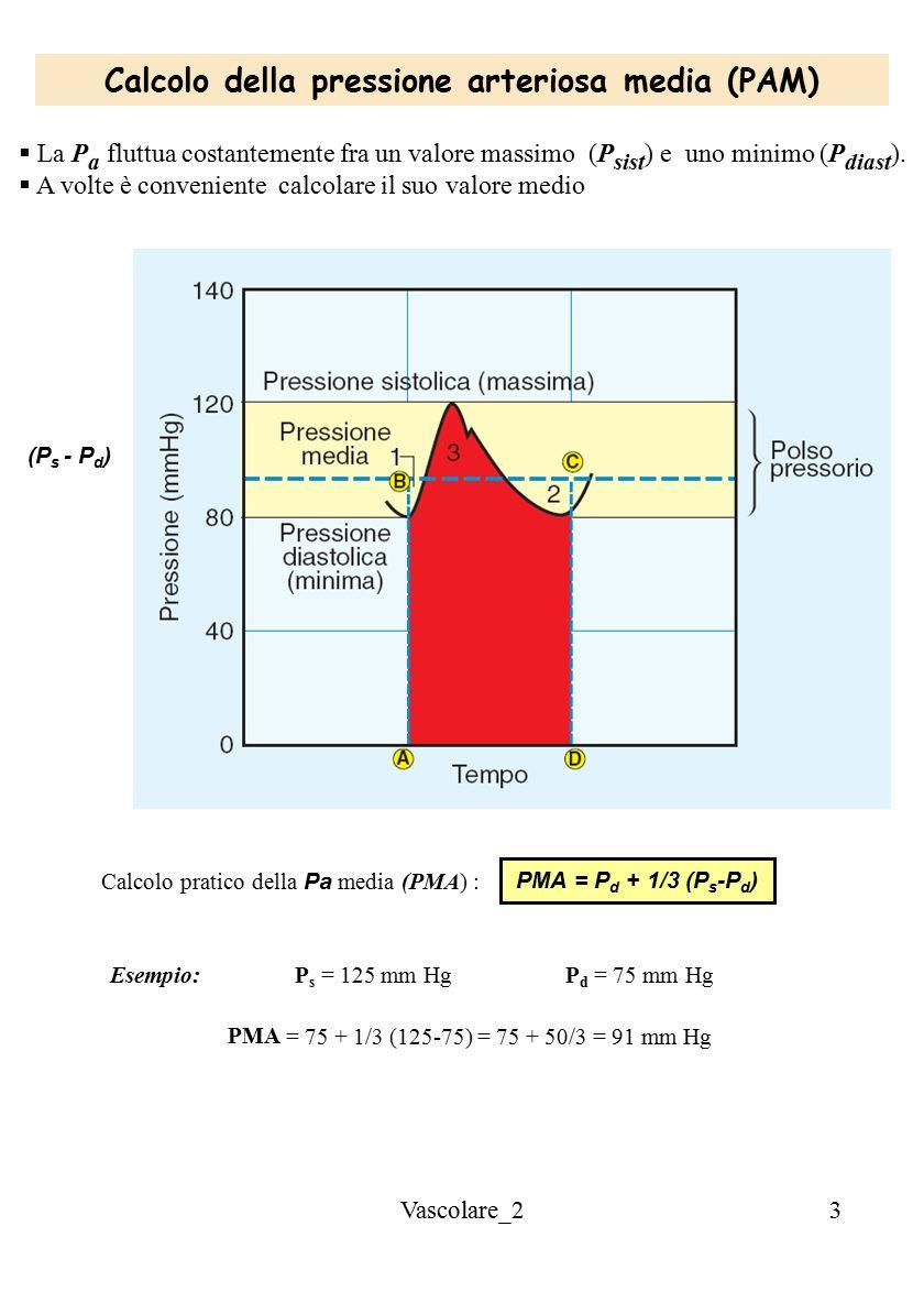 Calcolo della pressione arteriosa media (PAM)