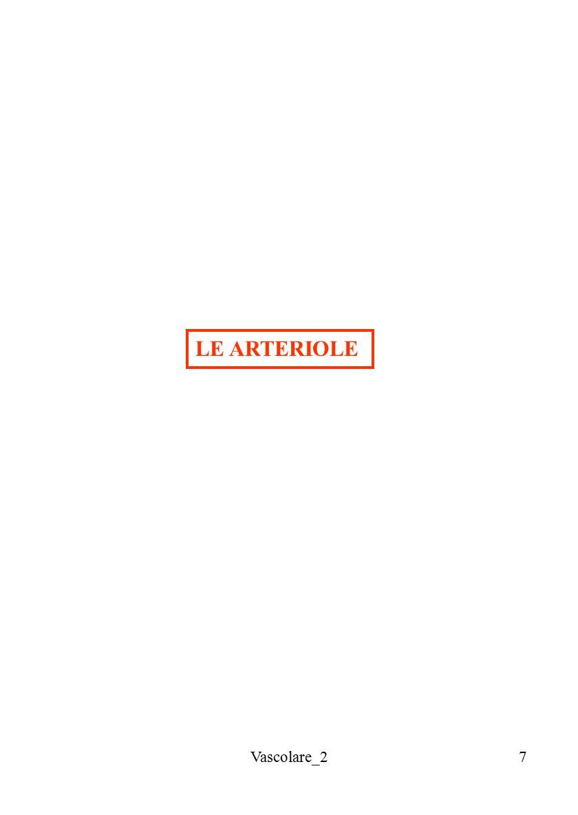LE ARTERIOLE Vascolare_2