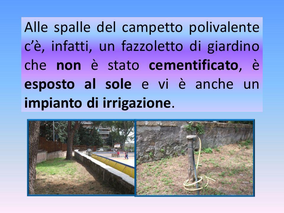 Alle spalle del campetto polivalente c'è, infatti, un fazzoletto di giardino che non è stato cementificato, è esposto al sole e vi è anche un impianto di irrigazione.