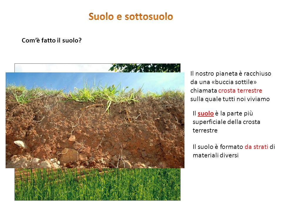 Suolo e sottosuolo Che cos'è il suolo Com'è fatto il suolo