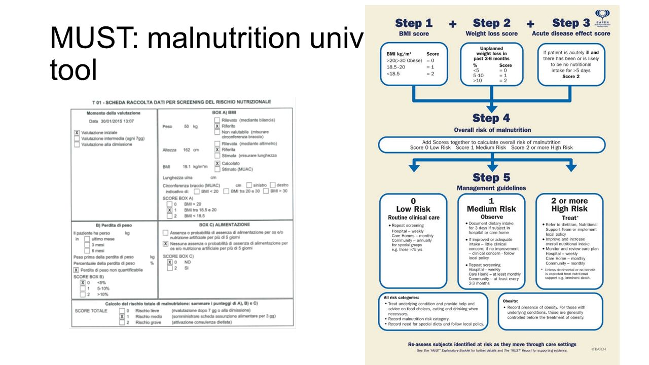 malnutrition universal screening tool essay Predictive validity of 'malnutrition universal screening tool' ('must') and short form mini nutritional assessment (mna-sf) in terms of survival and length of.