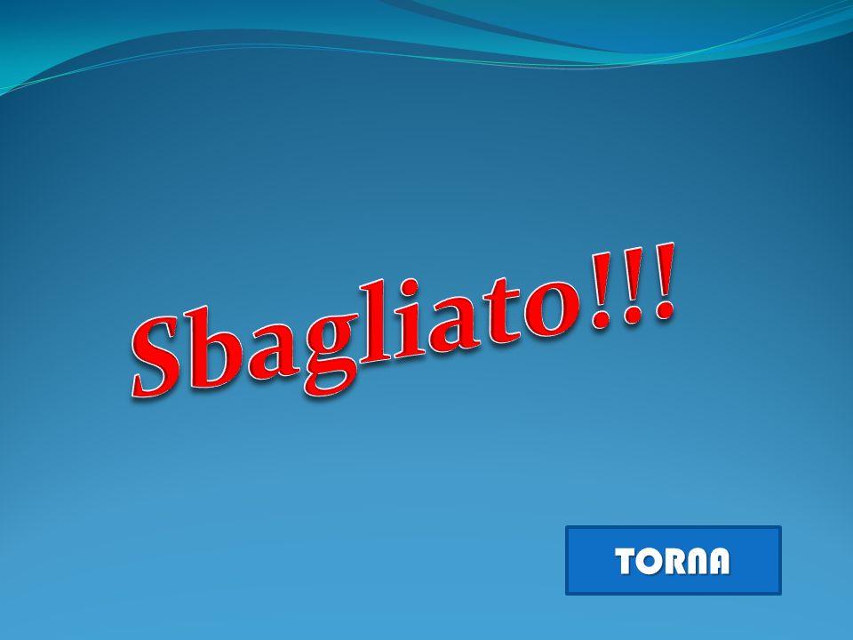 Sbagliato!!! TORNA