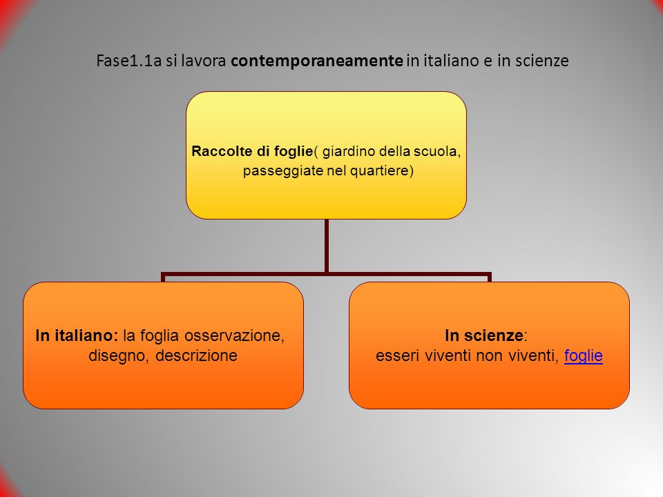 Fase1.1a si lavora contemporaneamente in italiano e in scienze