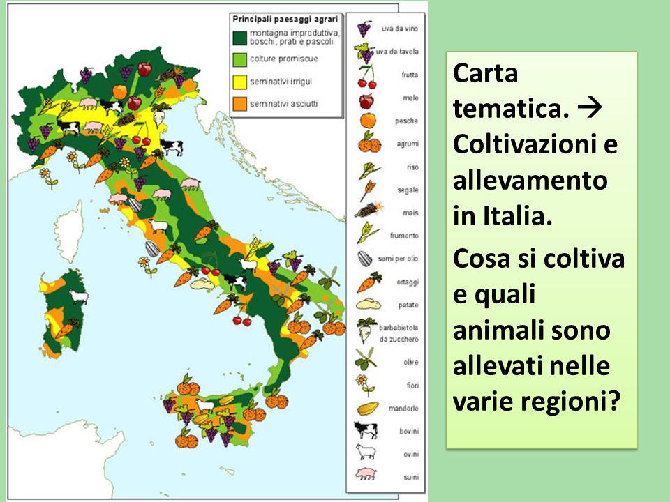 Cartina Tematica Italia Da Stampare.Carta Tematica Italia Agricoltura