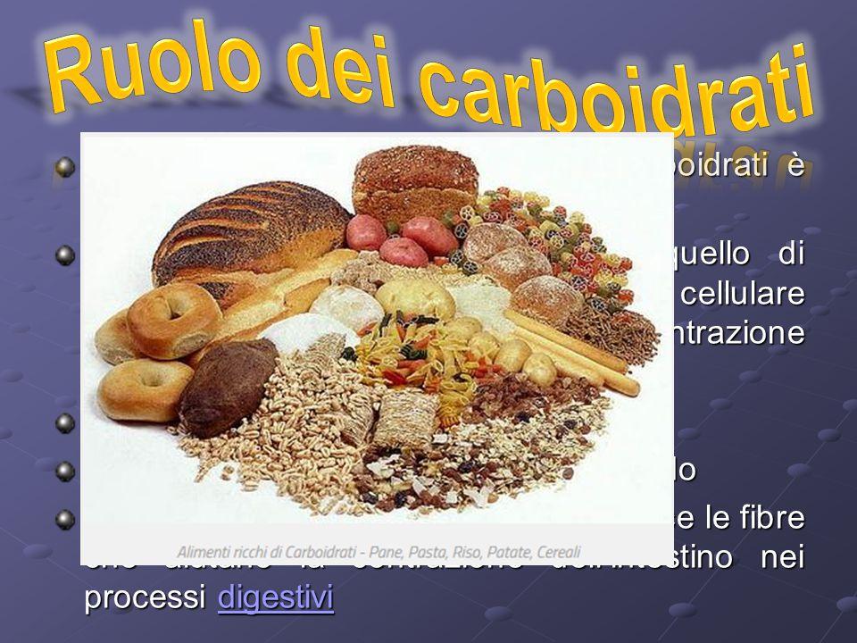 Ruolo dei carboidrati Come abbiamo visto il ruolo dei carboidrati è molteplice.