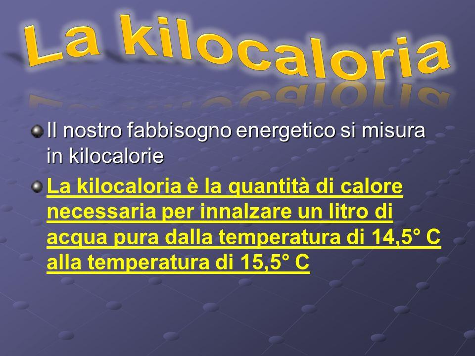La kilocaloria Il nostro fabbisogno energetico si misura in kilocalorie.