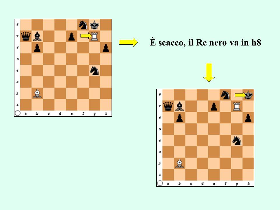 È scacco, il Re nero va in h8