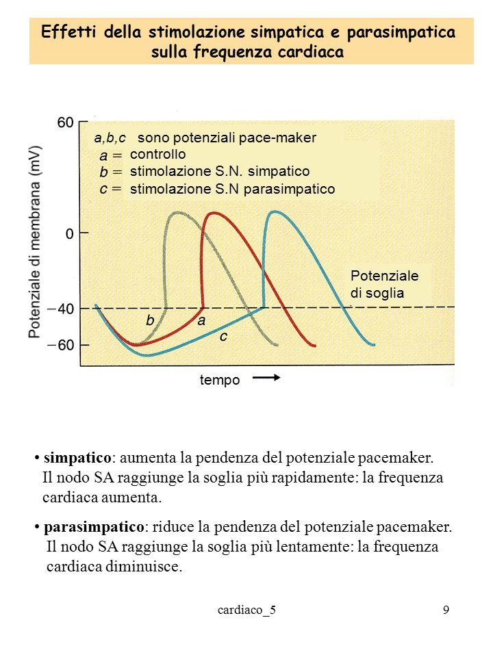 Effetti della stimolazione simpatica e parasimpatica