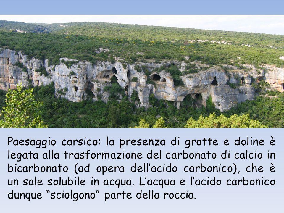 Paesaggio carsico: la presenza di grotte e doline è legata alla trasformazione del carbonato di calcio in bicarbonato (ad opera dell'acido carbonico), che è un sale solubile in acqua.
