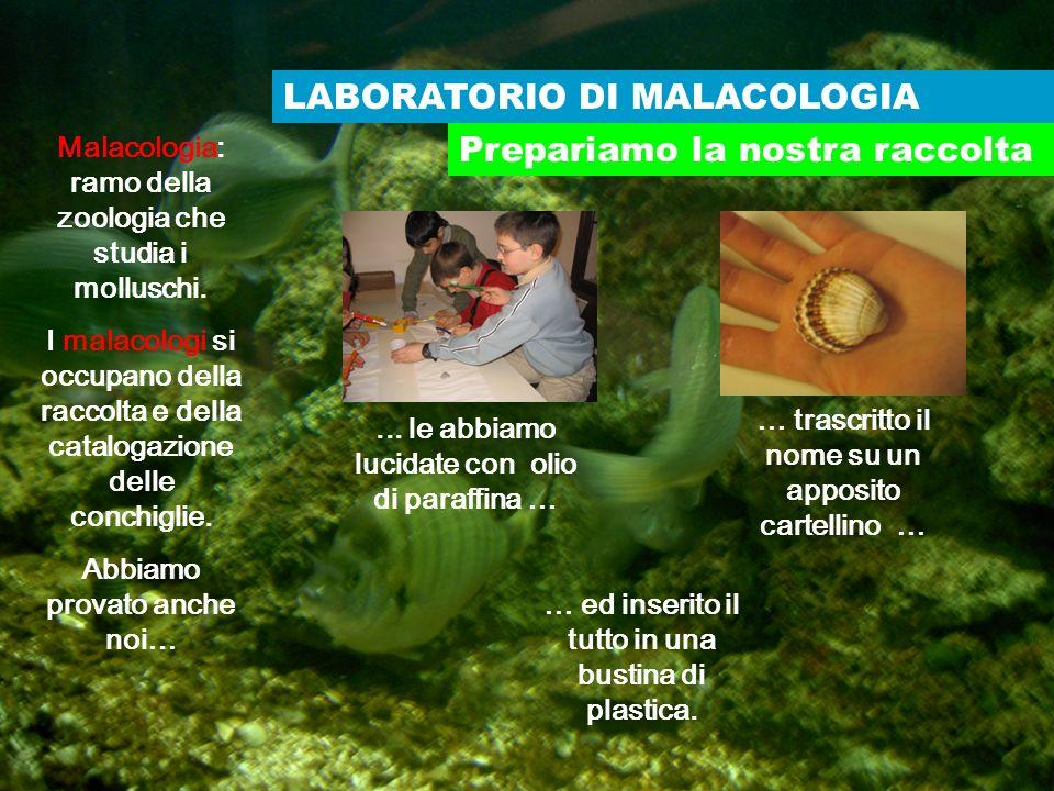LABORATORIO DI MALACOLOGIA