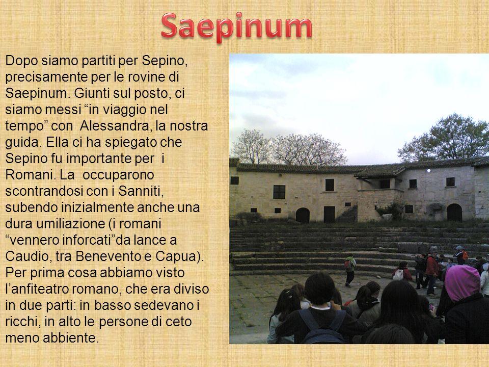 Saepinum